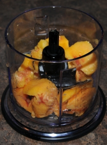 Put peaches, curry and ginger in a food processor. Add coconut milk.