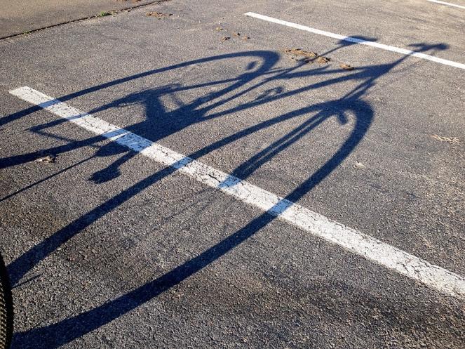 Bike Shadow